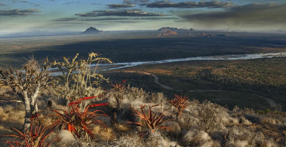 Niassa landscape